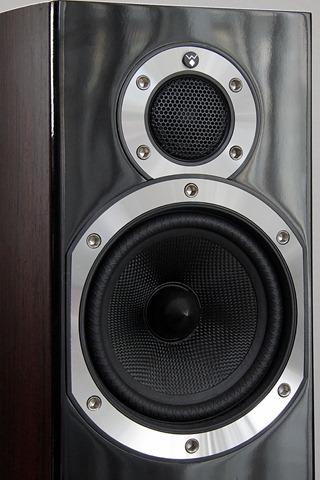 Wharfedale Diamond 10.3 speakers close up