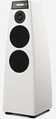 Meridian DSP5200SE speakersysteem